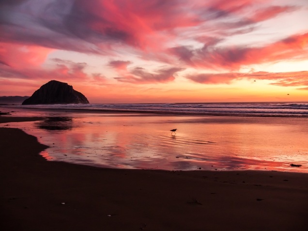 3648x2736 uncropped TheAppBuilder-icon-morro-strand-sunset-21nov